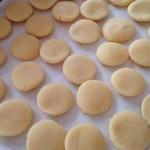 減感作療法を長く続けるためのコツ「特製クッキー」で楽に進めよう