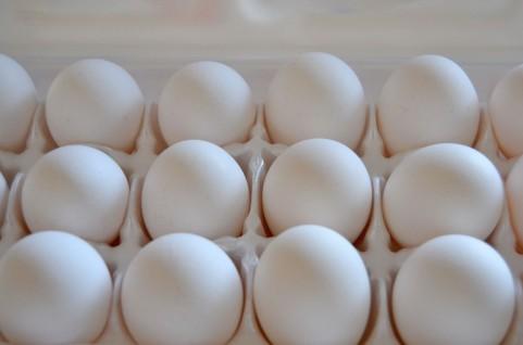 卵殻カルシウムって何?焼成と未焼成の違いは?卵アレルギーと関連ある?