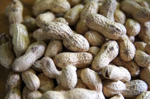 節分の豆まきに落花生(ピーナッツ)?大豆?アレルギーっ子は家庭や幼稚園で注意を
